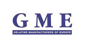 GME WEB